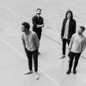 District Five Quartet wird Companion ZHdK